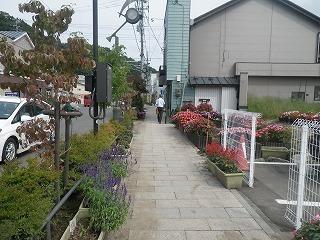 160924台風10号被害�A(中央通).jpg